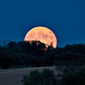 Rituales interesantes para hacer con luna llena