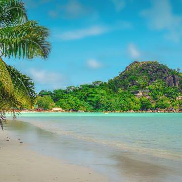 ¿Qué signos prefieren la playa y cuales la montaña?